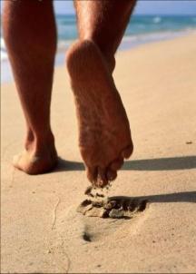 http://gracewalk.files.wordpress.com/2006/10/barefoot.jpg