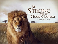 Encouragement from King David - 1 Chronicles 26 - 28