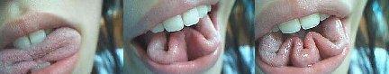 tongue tricks - Taming of the Tongue - James3