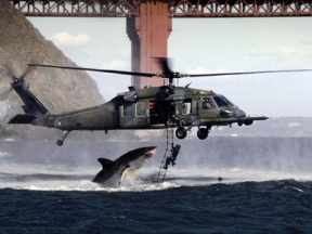 Shark Attacks Helicopter - Are You Having a Bad Day? - Psalms 69