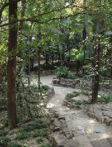 Garden pathway - God will make a way - Psalms 77